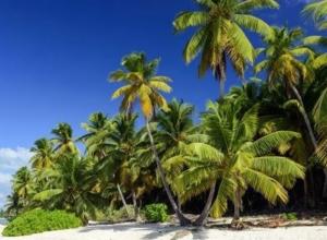 Wakacje na Karaibach! Dominikana na 13 dni za 2453 PLN. Wylot z Poznania i pobyt w hotelu ze śniadaniami