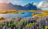 Loty na Islandię z Katowic od 178 PLN (268 PLN bez WDC)