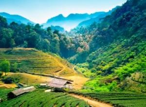 Tygodniowy pobyt w Tajlandii za 1828 PLN (loty z Warszawy do Chiang Mai + noclegi ze śniadaniami)