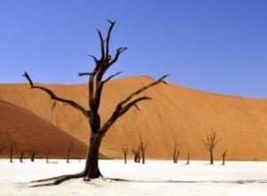 Na wakacje do Namibii – loty z Berlina za 1538 PLN